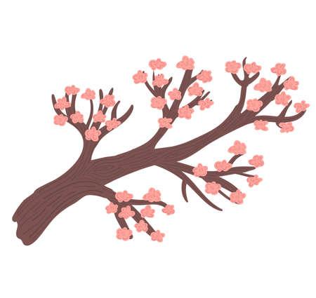 Decorative pink sakura tree concept, oriental cherry blossom, asian style wooden isolated on white, cartoon vector illustration. Design outdoor japanese forest, woodland branch sapling. Illustration