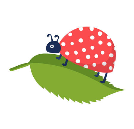 Springtime cute wild ladybug character, flying and rest spring tree leaf isolated on white, flat vector illustration. Design woodland ladybird blossom mood, wood forest rushing beetle.