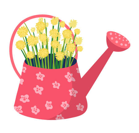 Spring watering can with garden flower, springtime mood wild floret isolated on white, flat vector illustration. Design woodland peduncle field, inflorescence blossom plant in bucket