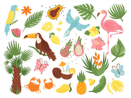 Cartoon tropical exotic elements vector illustration set. Flat collection with jungle bird, palm tree leaves and flowers, coconut fruit. Cute exotica from tropics, floral animal icon isolated on white Stock Illustratie