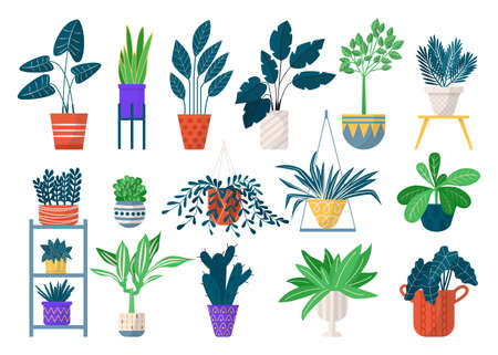 Green houseplants in pots icon set of isolated vector illustrations. Home planted greenery, flowers and pots with succulents, cactuses. House potted plants for floral design and botany, decoration. Ilustrace