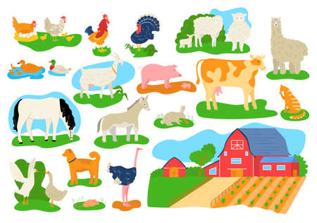 Farm domestic animals icons set isolated vector illustrations. Cow, horse, pig, goat and sheep, chicken, bull and rabbits, llama. Barn building at farm. Livestock at countryside, village farm animals.