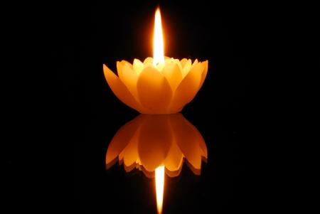 kerzen: Lotus Kerze und Reflexion