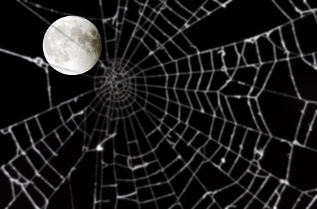 Full moon and blurred spider web Stock Photo