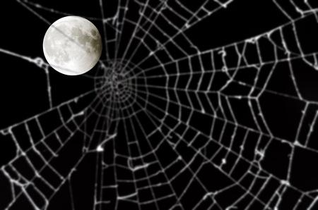 Luna llena y borrosa tela de ara�a Foto de archivo