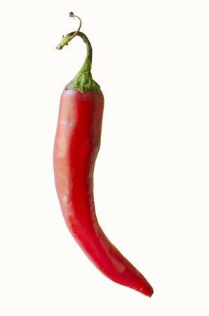 red chilli: Red hot chili pepper isolated on a white background Stock Photo
