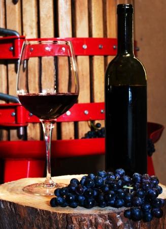 Naturaleza muerta con copa de vino tinto Foto de archivo
