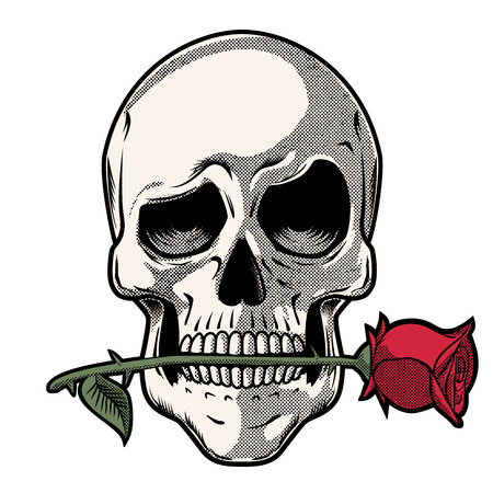 Hand Drawn Skull with a Rose - Skull with a funny look holding a rose between its teeth Stock Illustratie