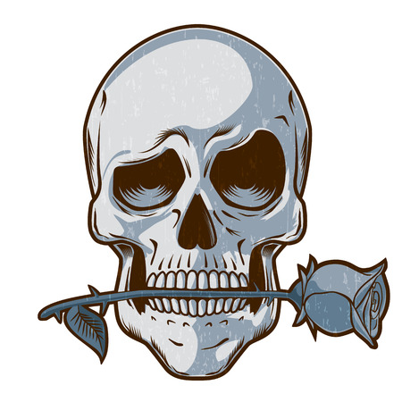 Hand Drawn Skull with a Rose - Skull with a funny look holding a rose between its teeth Ilustração