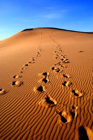 Gobi desert, Mongolia Stock Photo