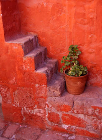 catalina: monastero di Santa Catalina, Arequipa, Per�