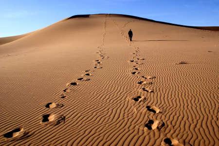 desert footprint: gobi desert, mongolia