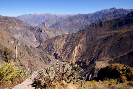 Colca canion, Peru