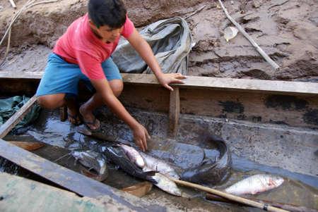River Beni, Bolivia Editorial