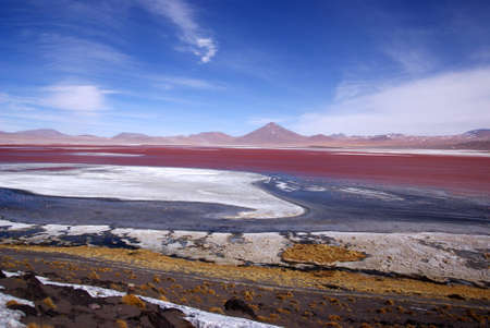 Laguna Colorado, de la Bolivie Banque d'images