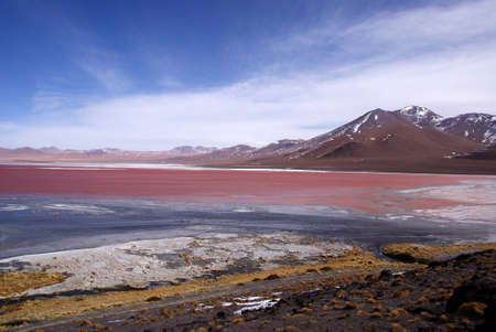 Laguna Colorado, Bolivia photo