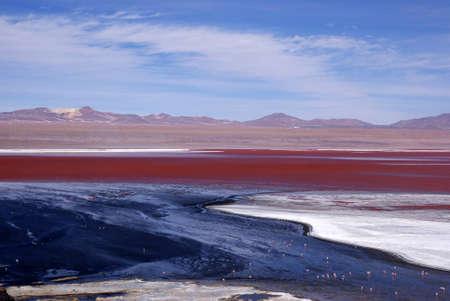 Laguna Colorado, Bolivia Stock Photo - 11421400