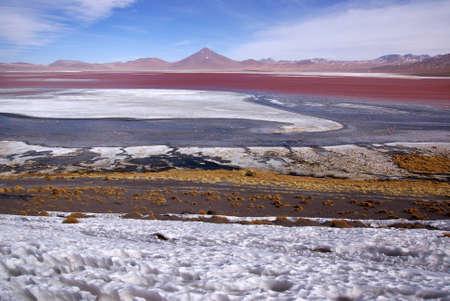 Laguna Colorado, Bolivia photo
