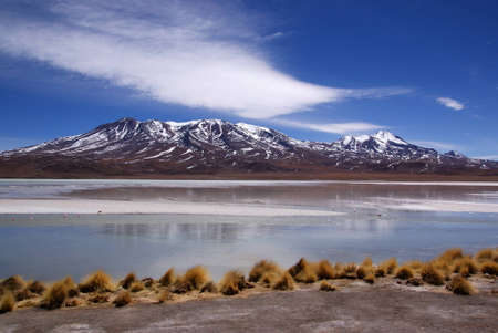 Laguna celeste in atacama desert, Flamingos, Bolivia Stock Photo