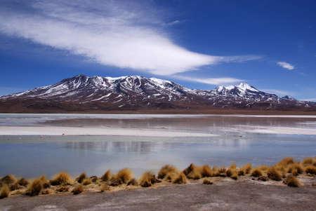 Laguna Celeste dans le d�sert d'Atacama, flamants roses, de la Bolivie Banque d'images
