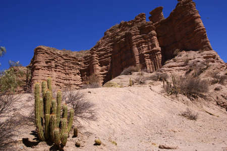 Desert, andean landscape with canyon, Tupiza, Bolivia