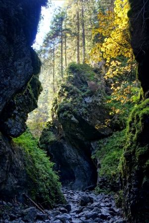 Cracow gorge, Tatras Mountains, Poland photo