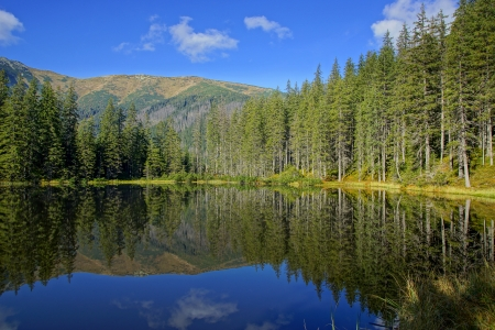 Reflection on Smreczynski lake in Koscieliska Valley, Tatras Mountains, Poland photo