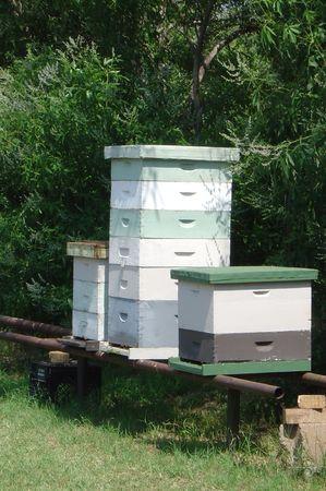 Modern Bee hives Reklamní fotografie