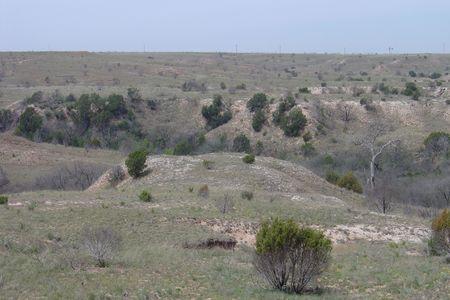Desert in the Southwest  Stok Fotoğraf