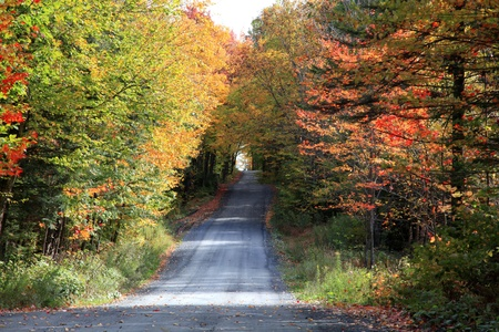 Sunny autumn day on a country road located in Quebec, Canada. photo
