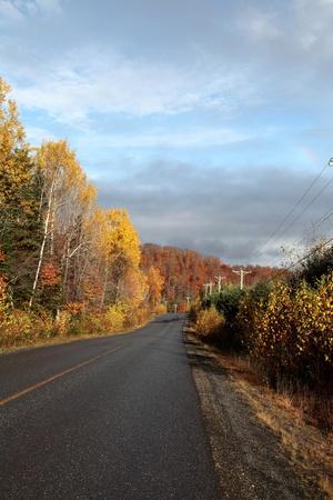 Colorful autumn road photo