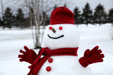 Smiley frosty the snowman on a cloudy winter afternoon. photo