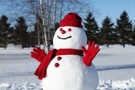 bonhomme de neige: Bonhomme de neige dans son costume rouge sur un beau matin et le froid Janvier.