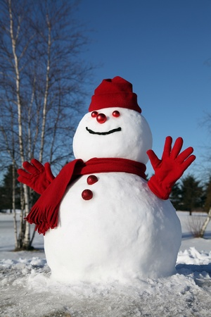 sunny cold days: Snowman on a cold winter morning.