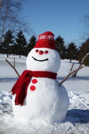 palle di neve: Pupazzo di neve con il cappello fiocco di neve. Archivio Fotografico