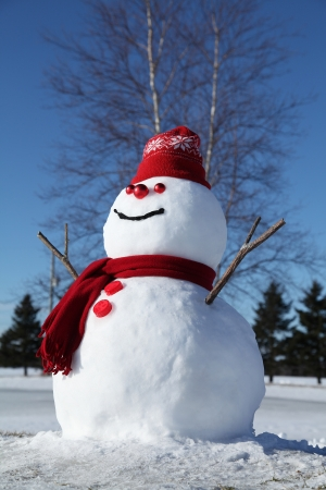 Snowman with his red snowflake hat. photo