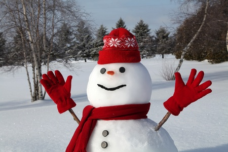 Cheerful snowman on a cold and bright winter morning.