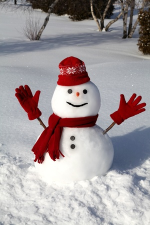 Cute snowman on a bright and cold winter morning. Stock Photo