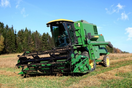Harvesting in a field located in Quebec, Canada, on a sunny autumn afternoon  photo