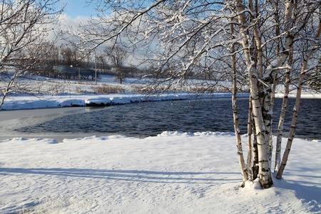 Winter scene located around a small lake located in Quebec, Canada