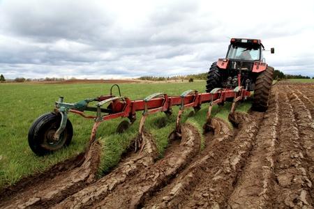 plowing: Arar en una tarde de primavera nublado Foto de archivo