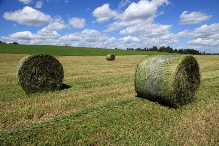Freshly rolled bales of hay ready to be picked up Stock Photo
