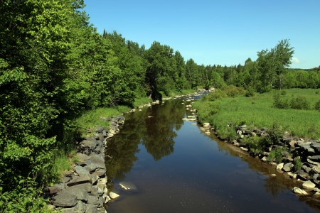 Quiet stream on a beautiful summer morning photo