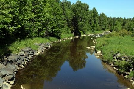Quiet stream located in Quebec, Canada  photo