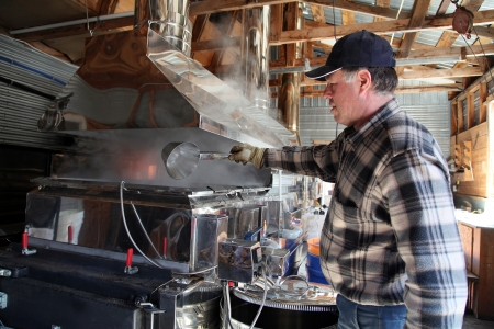 maple syrup: Maple syrup producer checking the thickness of the thickness of the syrup
