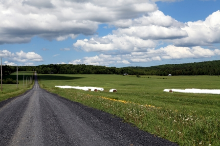 Quiet country road surrounded by farmlands photo