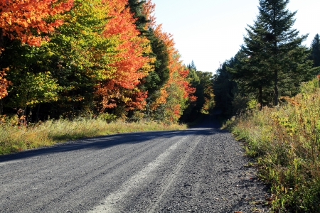 sugar maple: Sunny autumn morning on a country road located in Quebec, Canada