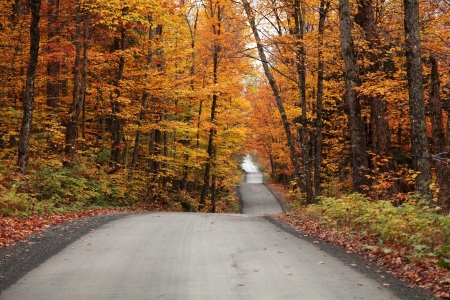 the color of silence: Autumn colors in the countryside located in Quebec, Canada  Stock Photo