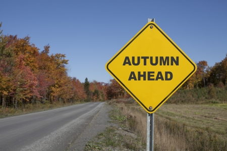 Autumn ahead road sign against a fall landscape photo