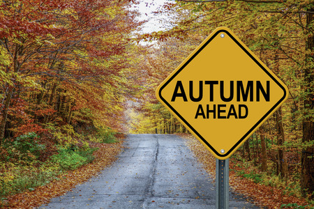 cautionary: Autumn ahead cautionary road sign against a fall background